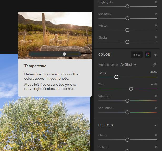 Tools tips in Lightroom CC